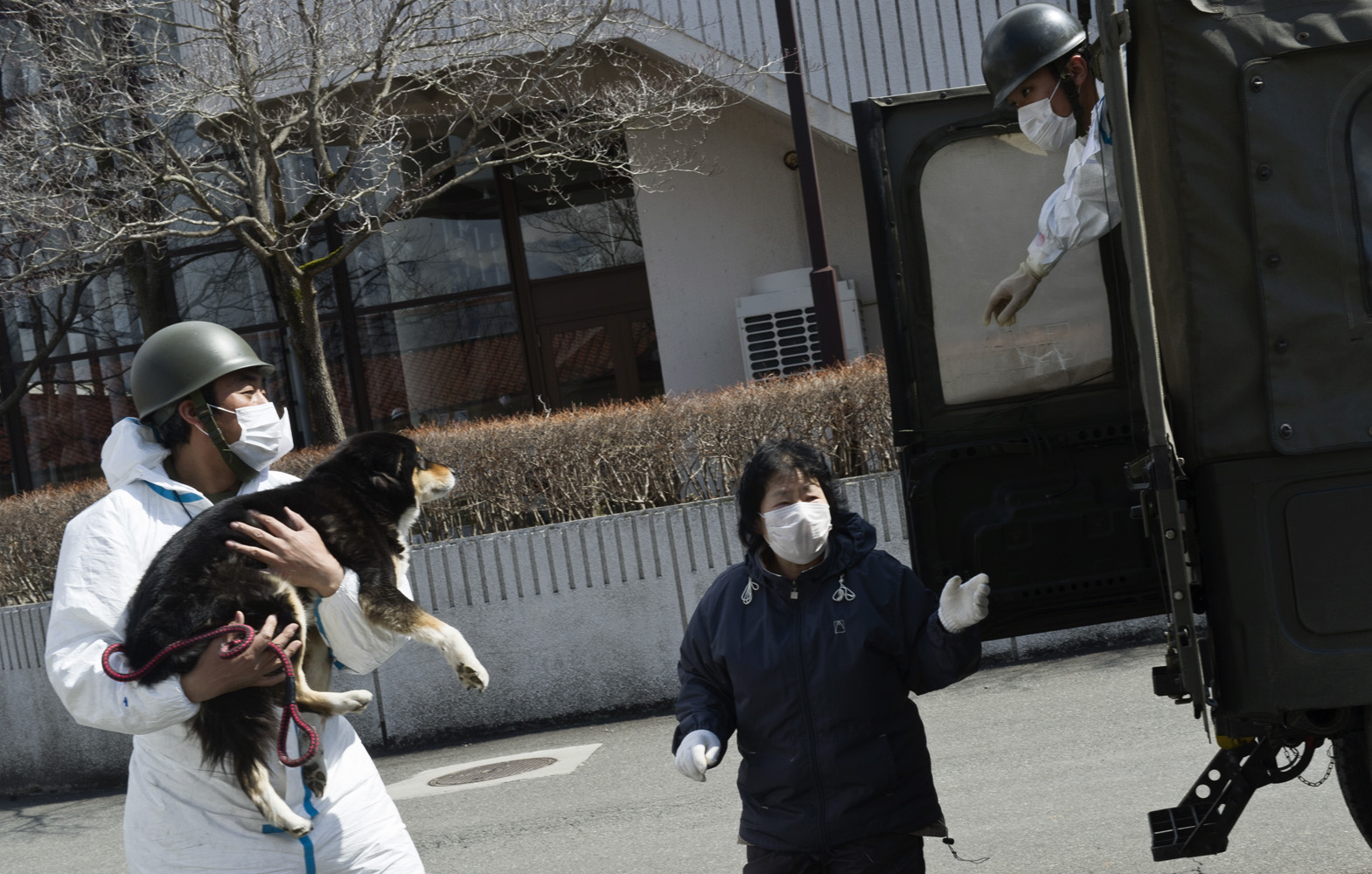 Kawamata,  Japan, 26 March 2011  Soldier taking a dog for radioactivy screening at Kawamata City, 60 km from Fukushima Nuclear Power Plant.