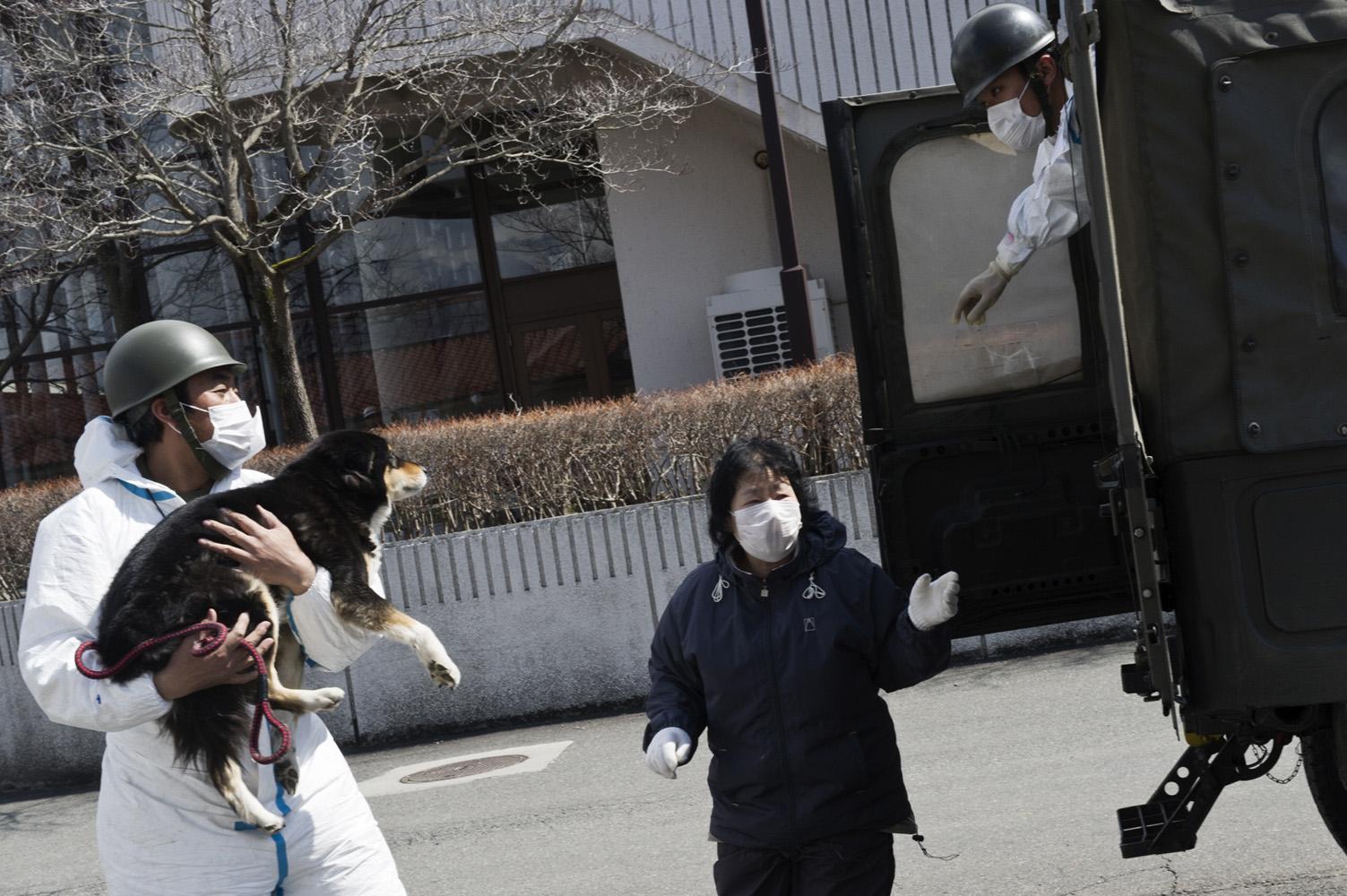 Kawamata,  Japan, 26 March 2011 Soldier taking a dog for radioactivy screening at Kawamata City, 60 km from Fukushima Nuclear Power Plant.
