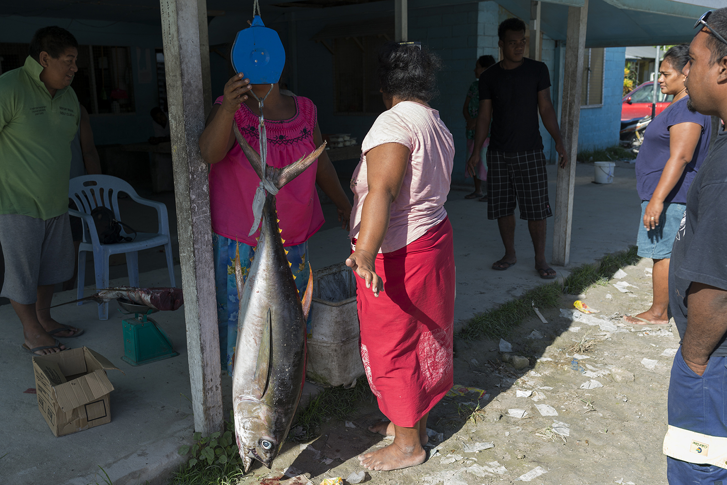 Tarawa Island, Kiribati, Pacific Ocean Fishmonger weighing up a tuna on a fishmarket in Betio, Tarawa Island, Kiribati. Local people are dependent on tuna as their protein while the foreign industrial fishing fleet export their catch making it harder for them to fish and get food.