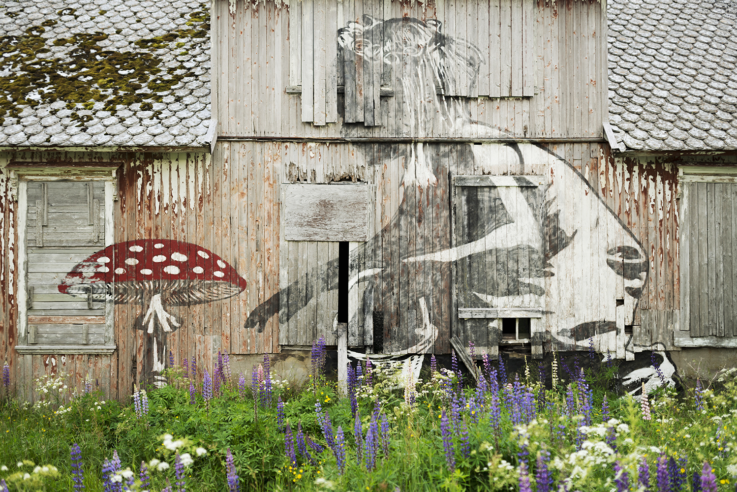 Streetart on Lofoten Islands by graffiti artists Dolk and Pobel
