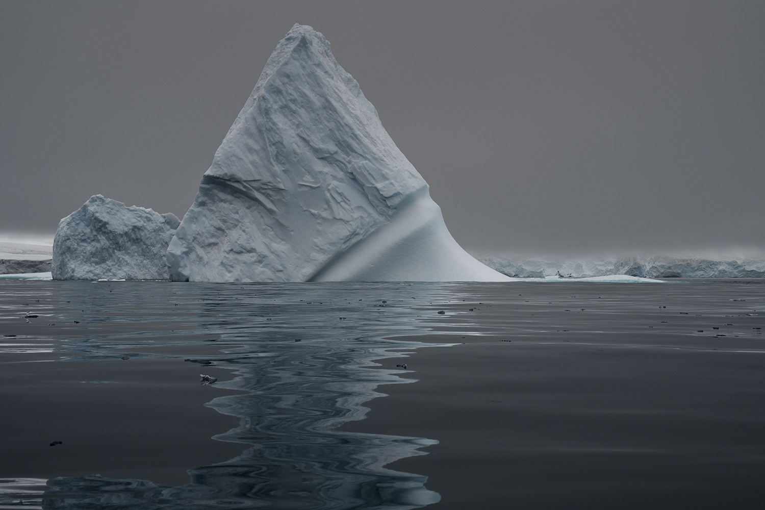 Iceberg in front of a glacier on Low Island, Antarctica.The West Antarctic Peninsula is one of the fastest warming areas on Earth, with only some areas of the Arctic experiencing faster rising temperatures.